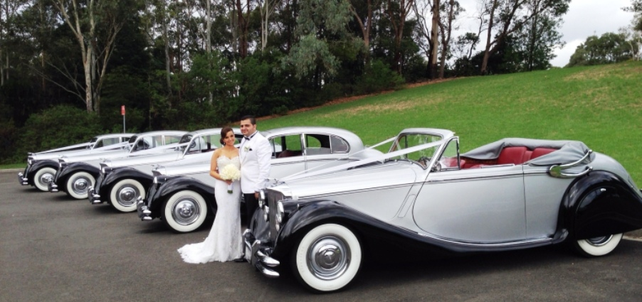 Wedding Cars collection